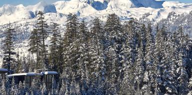 Whistler Canada Luxury Vacation rentals chalets holiday retreat